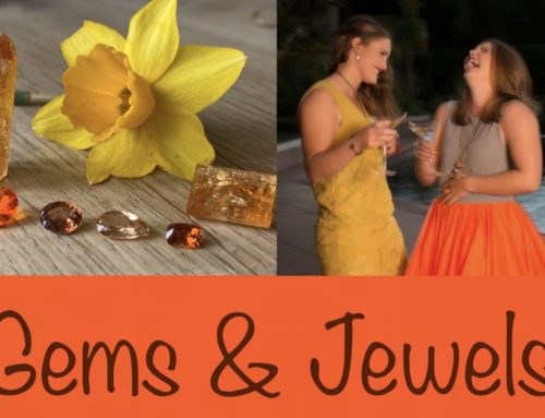 Gems & Jewels event – Edelstenen en Juwelen evenement programma