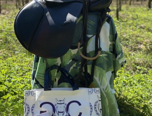 2020 Dankjewel Giveaway Paardenpakket